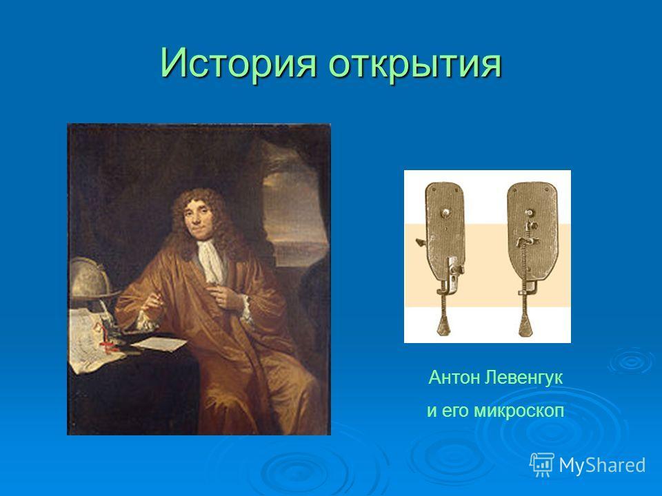 История открытия Антон Левенгук и его микроскоп