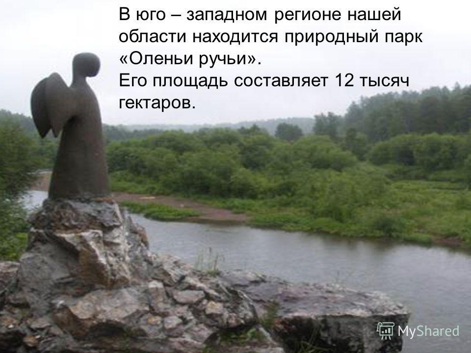 В юго – западном регионе нашей области находится природный парк «Оленьи ручьи». Его площадь составляет 12 тысяч гектаров.