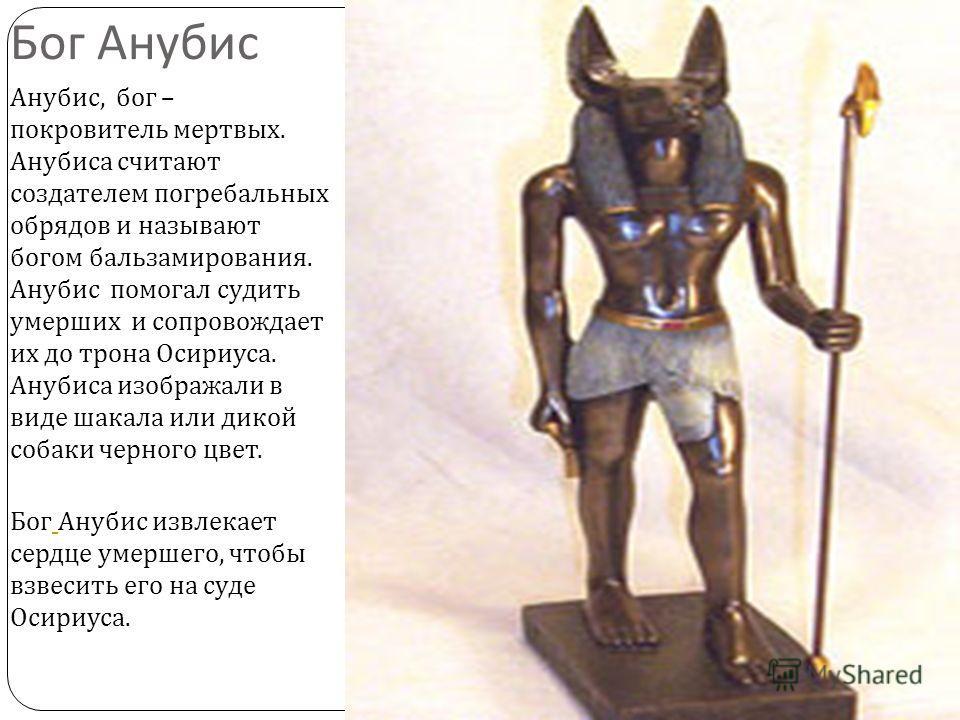 Бог Анубис Анубис, бог – покровитель мертвых. Анубиса считают создателем погребальных обрядов и называют богом бальзамирования. Анубис помогал судить умерших и сопровождает их до трона Осириуса. Анубиса изображали в виде шакала или дикой собаки черно