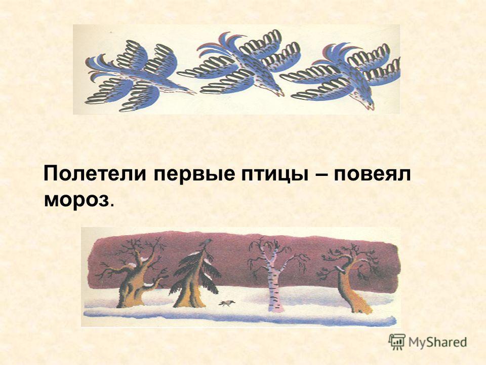 Полетели первые птицы – повеял мороз.