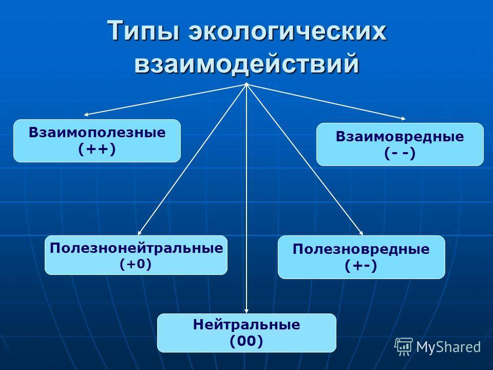 Взаимополезные (++) Полезнонейтральные (+0) Полезновредные (+-) Взаимовредные (- -) Нейтральные (00)