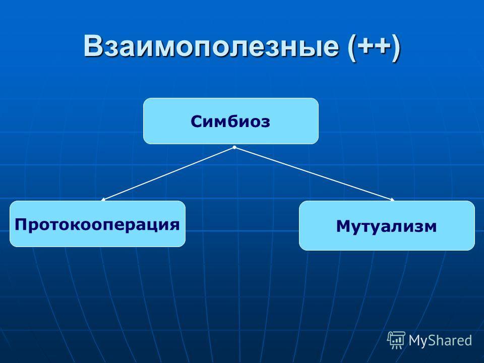 Взаимополезные (++) Протокооперация Мутуализм Симбиоз
