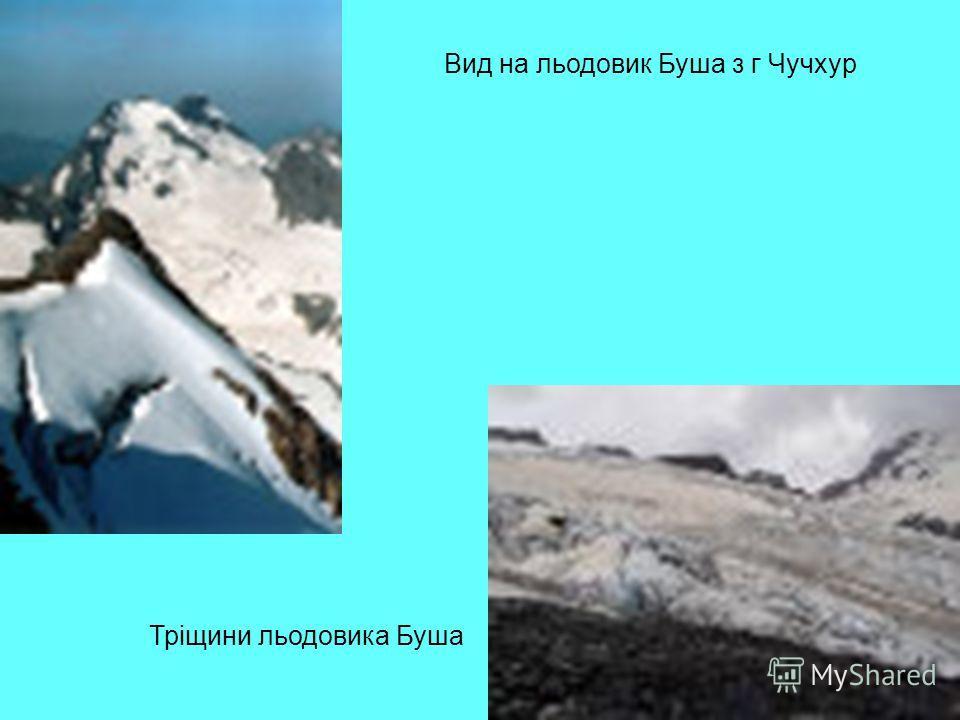 Вид на льодовик Буша з г Чучхур Тріщини льодовика Буша