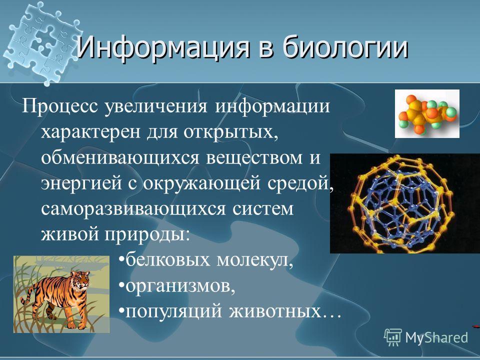 Информация в биологии Процесс увеличения информации характерен для открытых, обменивающихся веществом и энергией с окружающей средой, саморазвивающихся систем живой природы: белковых молекул, организмов, популяций животных…