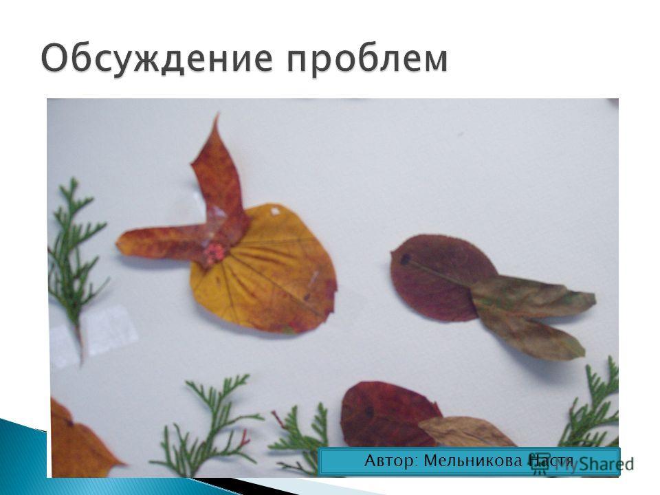 Автор: Мельникова Настя