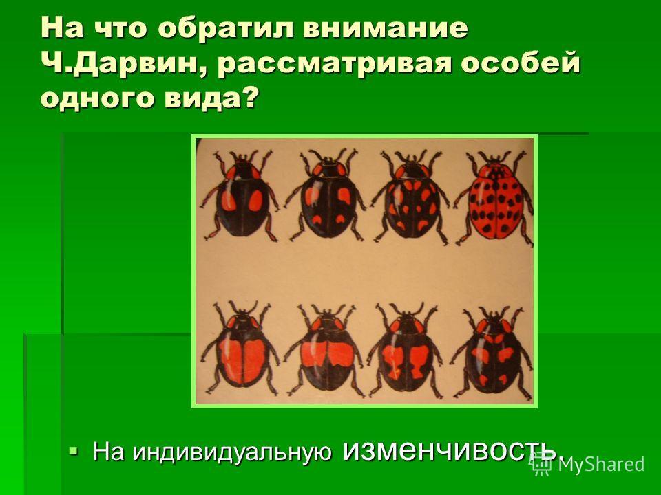 На что обратил внимание Ч.Дарвин, рассматривая особей одного вида? На индивидуальную изменчивость. На индивидуальную изменчивость.