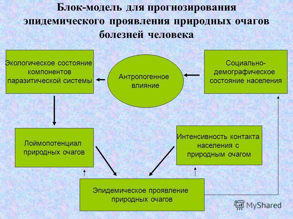 Блок-модель для прогнозирования эпидемического проявления природных очагов болезней человека Экологическое состояние компонентов паразитической системы Антропогенное влияние Социально- демографическое состояние населения Лоймопотенциал природных очаг