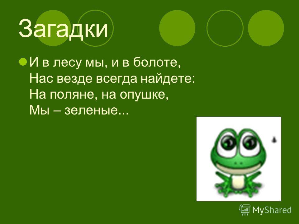 Загадки И в лесу мы, и в болоте, Нас везде всегда найдете: На поляне, на опушке, Мы – зеленые...