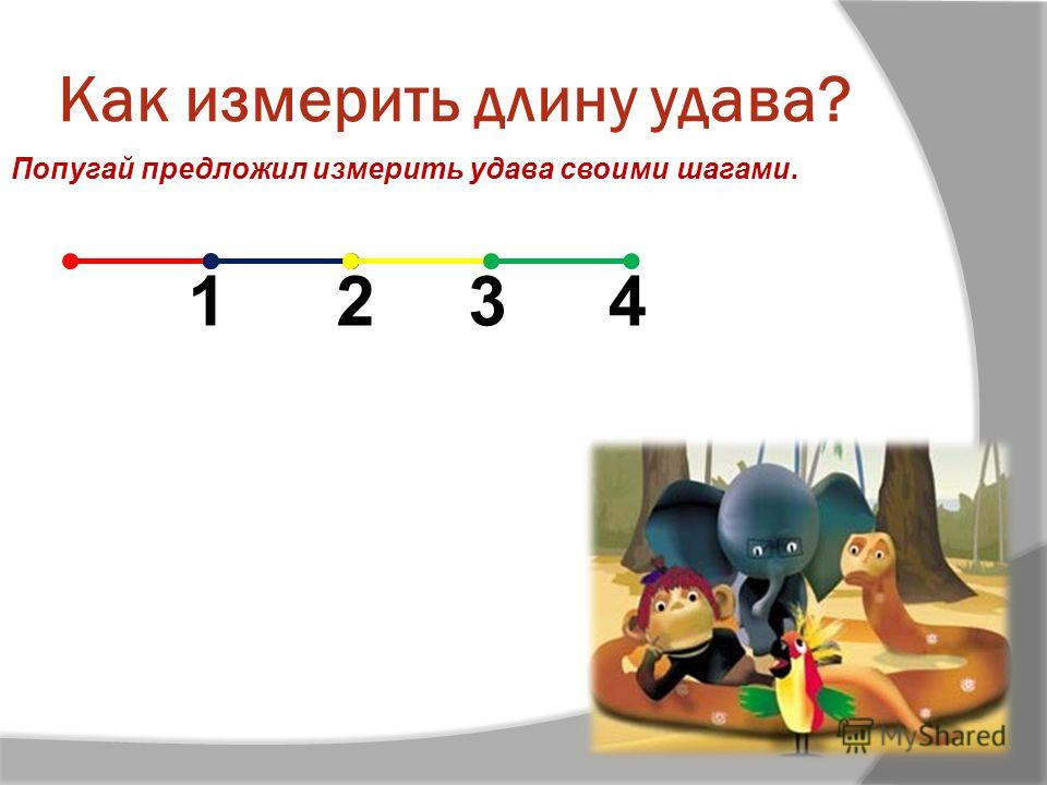Как измерить длину удава? Попугай предложил измерить удава своими шагами. 1234