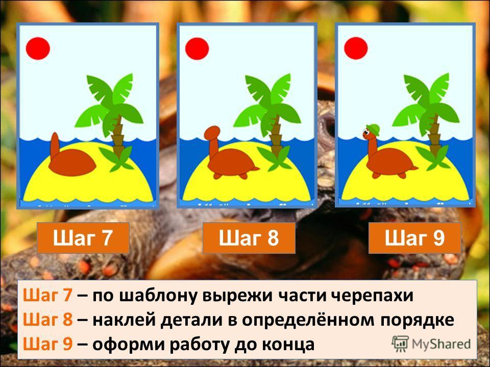 Шаг 7Шаг 8Шаг 9 Шаг 7 – по шаблону вырежи части черепахи Шаг 8 – наклей детали в определённом порядке Шаг 9 – оформи работу до конца