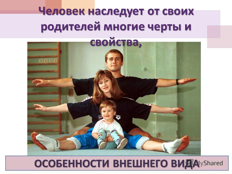 Человек наследует от своих родителей многие черты и свойства, ОСОБЕННОСТИ ВНЕШНЕГО ВИДА