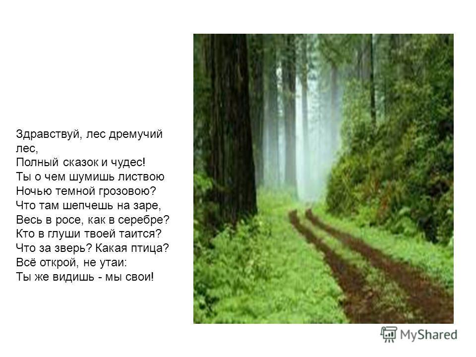 Здравствуй, лес дремучий лес, Полный сказок и чудес! Ты о чем шумишь листвою Ночью темной грозовою? Что там шепчешь на заре, Весь в росе, как в серебре? Кто в глуши твоей таится? Что за зверь? Какая птица? Всё открой, не утаи: Ты же видишь - мы свои!