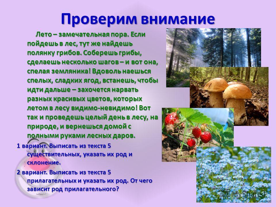 Проверим внимание Лето – замечательная пора. Если пойдешь в лес, тут же найдешь полянку грибов. Соберешь грибы, сделаешь несколько шагов – и вот она, спелая земляника! Вдоволь наешься спелых, сладких ягод, встанешь, чтобы идти дальше – захочется нарв