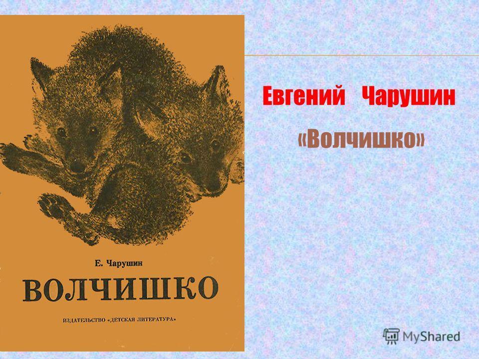 Евгений Чарушин «Волчишко»