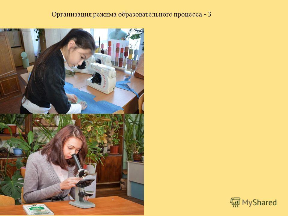 Организация режима образовательного процесса - 3