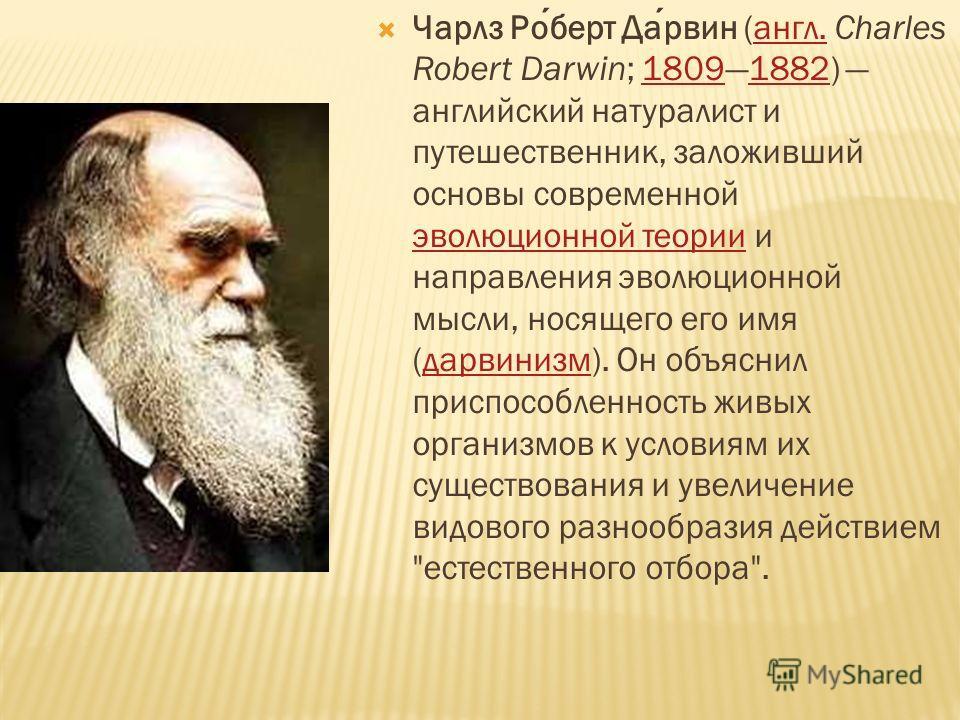 Чарлз Роберт Дарвин (англ. Charles Robert Darwin; 18091882) английский натуралист и путешественник, заложивший основы современной эволюционной теории и направления эволюционной мысли, носящего его имя (дарвинизм). Он объяснил приспособленность живых