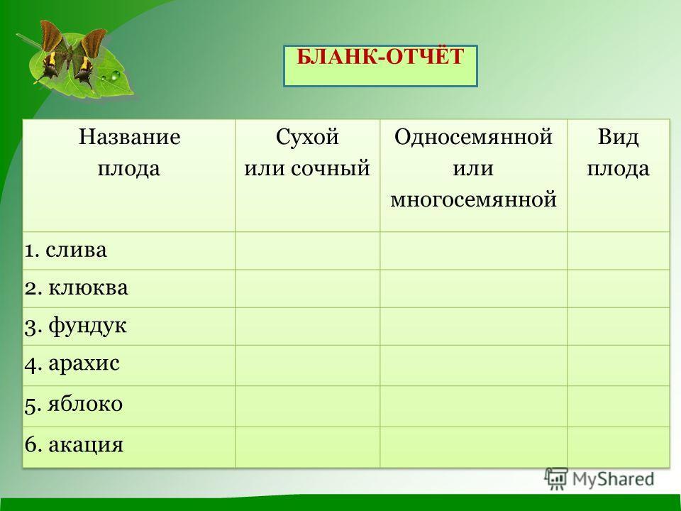 БЛАНК-ОТЧЁТ