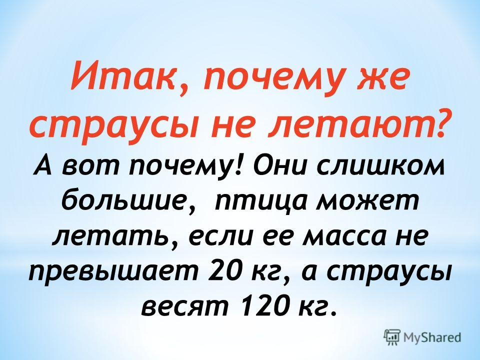 Итак, почему же страусы не летают? А вот почему! Они слишком большие, птица может летать, если ее масса не превышает 20 кг, а страусы весят 120 кг.