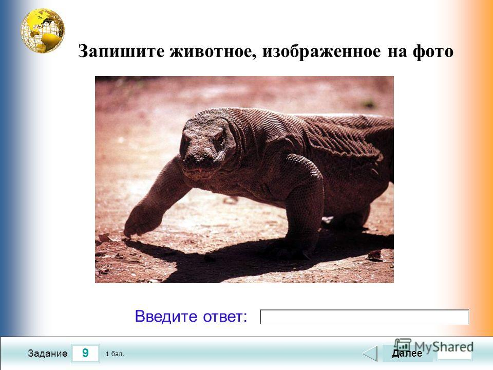 9 Задание Запишите животное, изображенное на фото Далее 1 бал. Введите ответ: