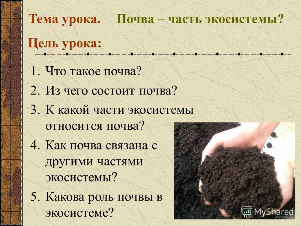 Экосистема почвы 3 класс сообщение