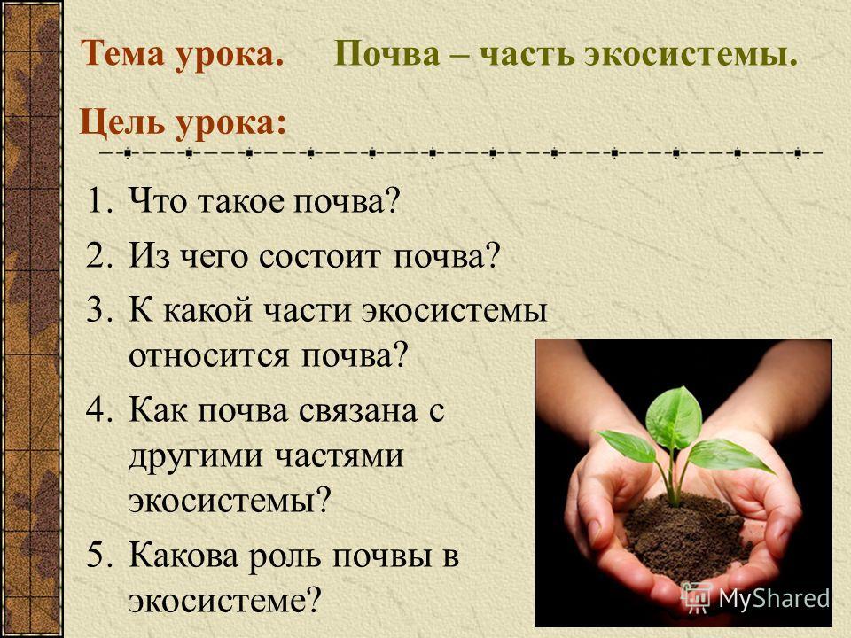 Почва – часть экосистемы. Тема урока. Цель урока: 1.Что такое почва? 2.Из чего состоит почва? 3.К какой части экосистемы относится почва? 4.Как почва связана с другими частями экосистемы? 5.Какова роль почвы в экосистеме?