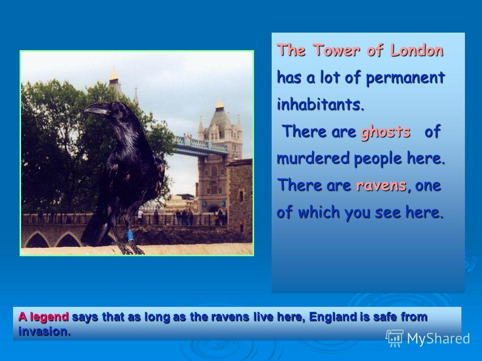 The Tower of London has a lot of permanent inhabitants. The Tower of London has a lot of permanent inhabitants. There are ghosts of murdered people here. There are ghosts of murdered people here. There are ravens, one of which you see here. A legend