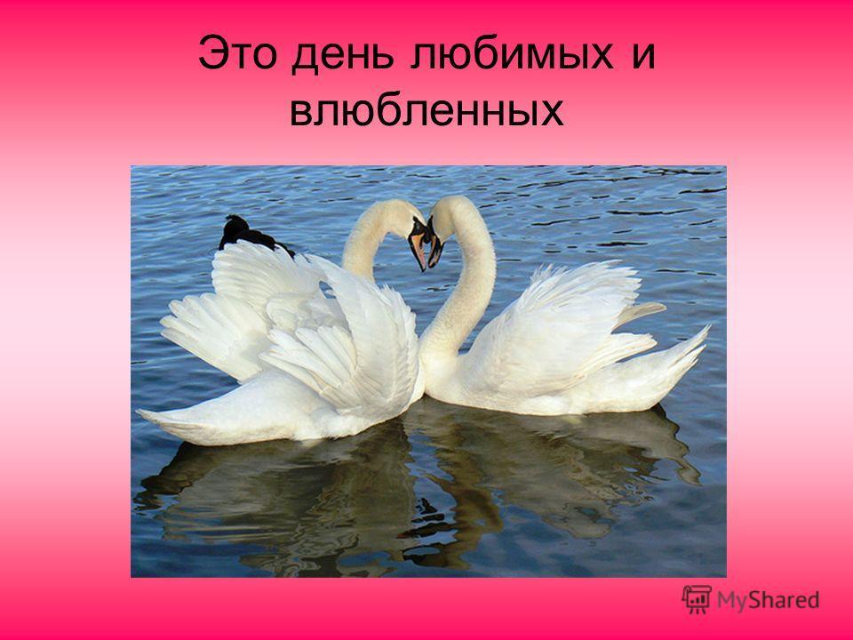 Это день любимых и влюбленных