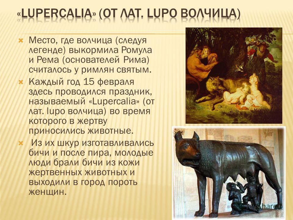 Место, где волчица (следуя легенде) выкормила Ромула и Рема (основателей Рима) считалось у римлян святым. Каждый год 15 февраля здесь проводился праздник, называемый «Lupercalia» (от лат. lupo волчица) во время которого в жертву приносились животные.