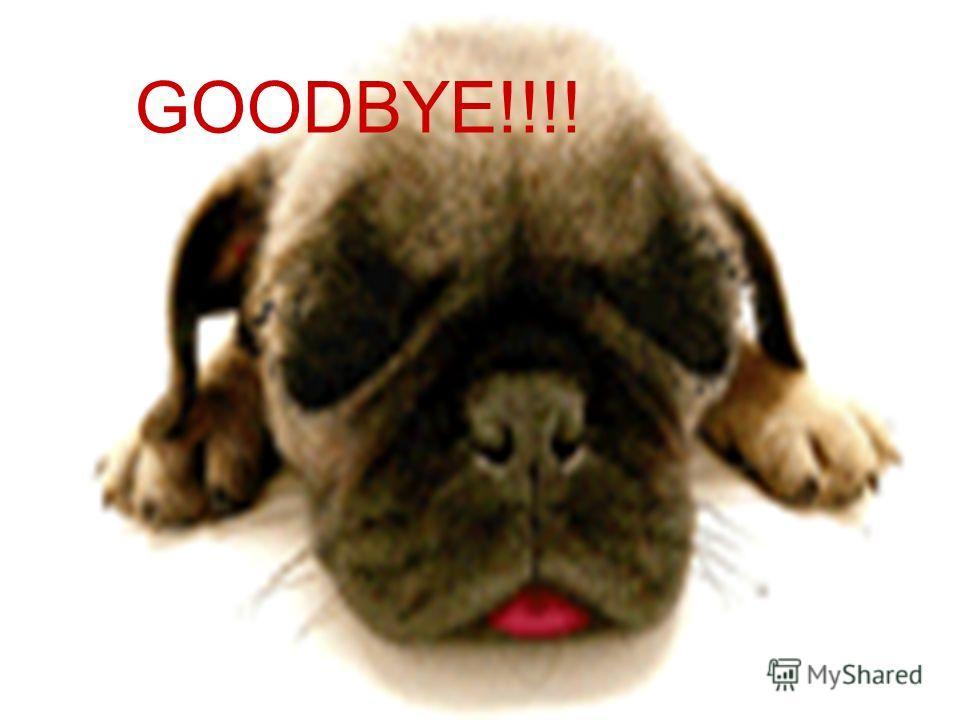 Goodbye GOODBYE!!!!