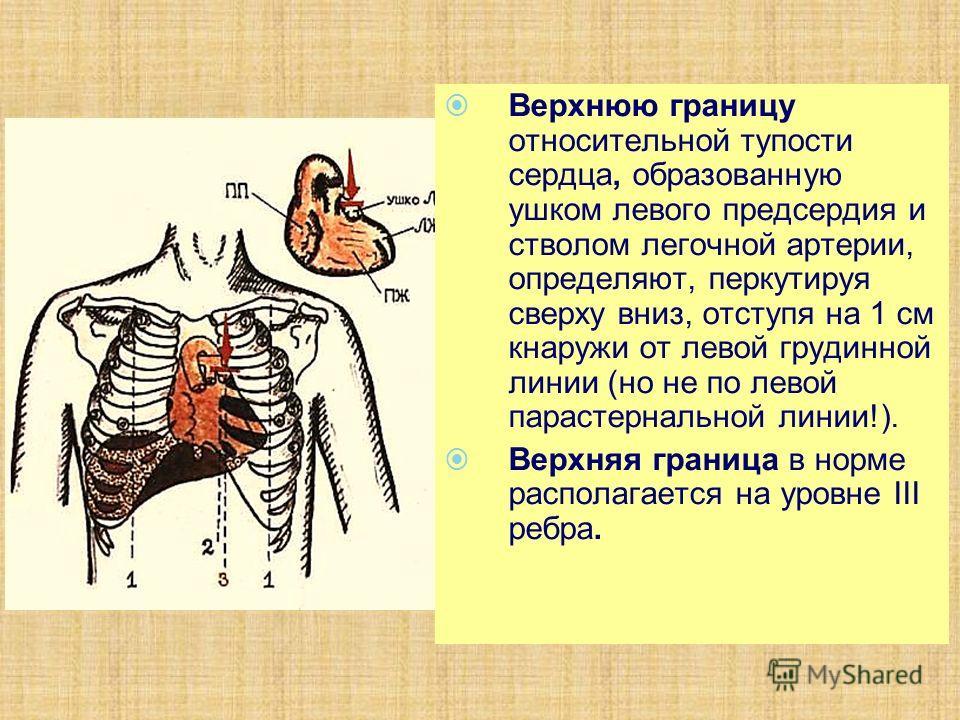 Верхнюю границу относительной тупости сердца, образованную ушком левого предсердия и стволом легочной артерии, определяют, перкутируя сверху вниз, отступя на 1 см кнаружи от левой грудинной линии (но не по левой парастернальной линии!). Верхняя грани