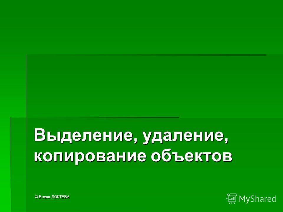 © Елена ЛОКТЕВА Выделение, удаление, копирование объектов