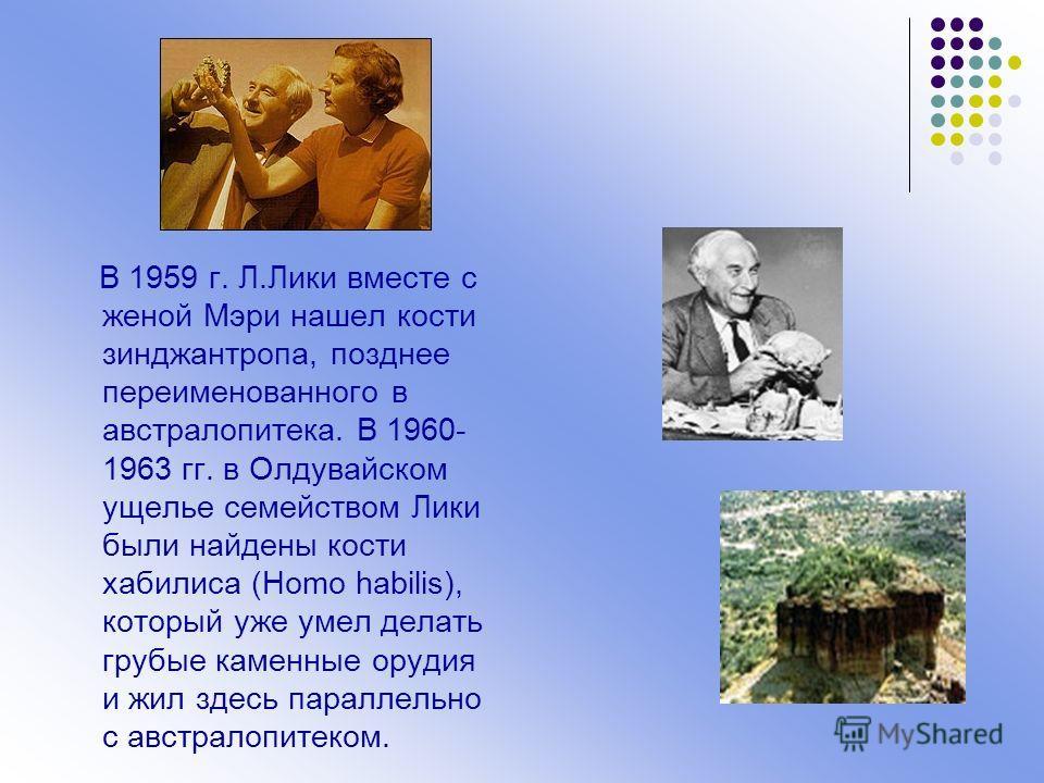 В 1959 г. Л.Лики вместе с женой Мэри нашел кости зинджантропа, позднее переименованного в австралопитека. В 1960- 1963 гг. в Олдувайском ущелье семейством Лики были найдены кости хабилиса (Homo habilis), который уже умел делать грубые каменные орудия