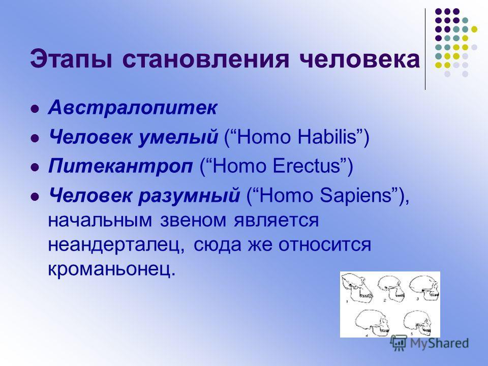 Этапы становления человека Австралопитек Человек умелый (Homo Habilis) Питекантроп (Homo Erectus) Человек разумный (Homo Sapiens), начальным звеном является неандерталец, сюда же относится кроманьонец.