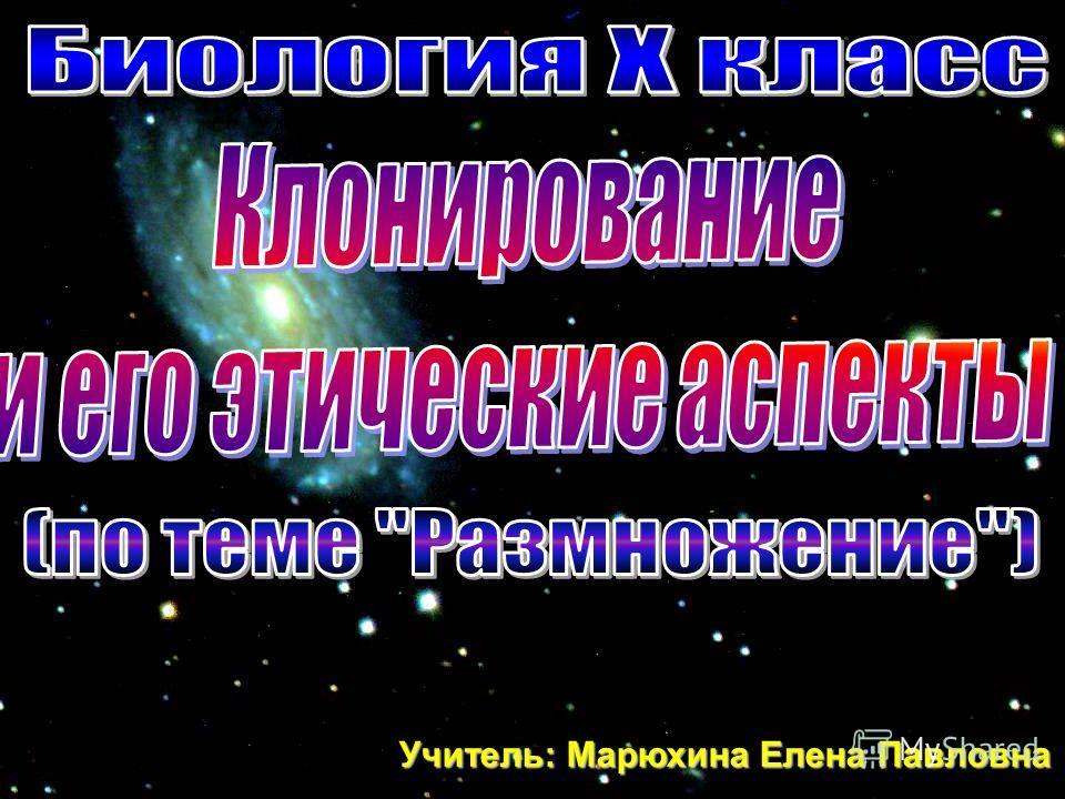 Учитель: Марюхина Елена Павловна