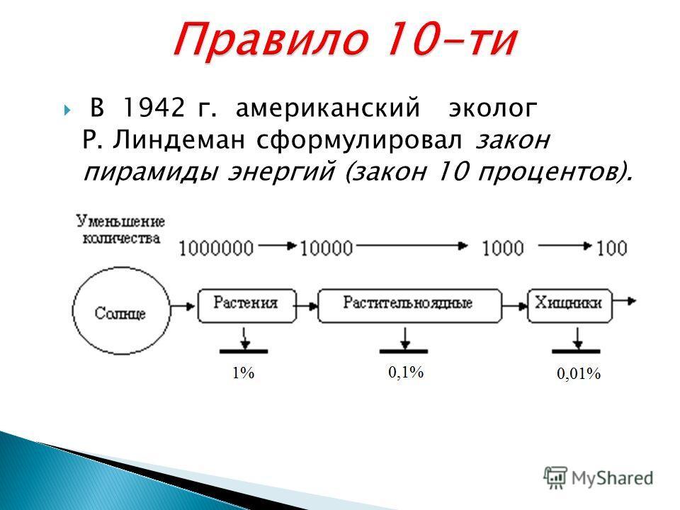 В 1942 г. американский эколог Р. Линдеман сформулировал закон пирамиды энергий (закон 10 процентов).