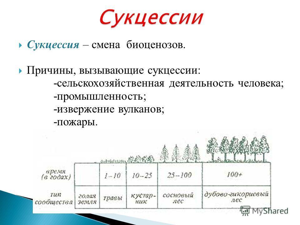 Сукцессия – смена биоценозов. Причины, вызывающие сукцессии: -сельскохозяйственная деятельность человека; -промышленность; -извержение вулканов; -пожары.