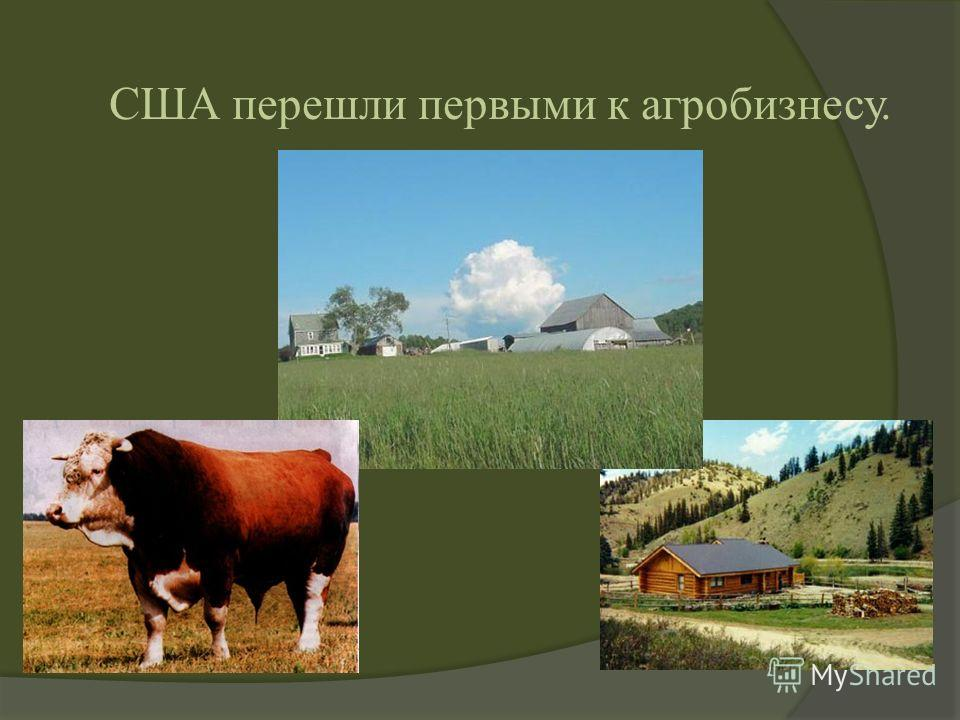 США перешли первыми к агробизнесу.