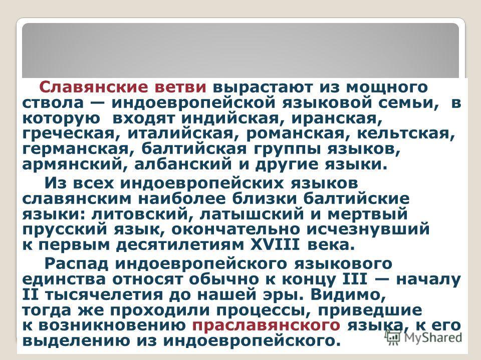 ДРЕВО ЯЗЫКОВ Славянские ветви вырастают из мощного ствола индоевропейской языковой семьи, в которую входят индийская, иранская, греческая, италийская, романская, кельтская, германская, балтийская группы языков, армянский, албанский и другие языки. Из