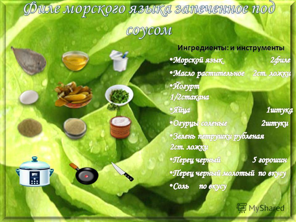 Рецепт блюда с щавеля