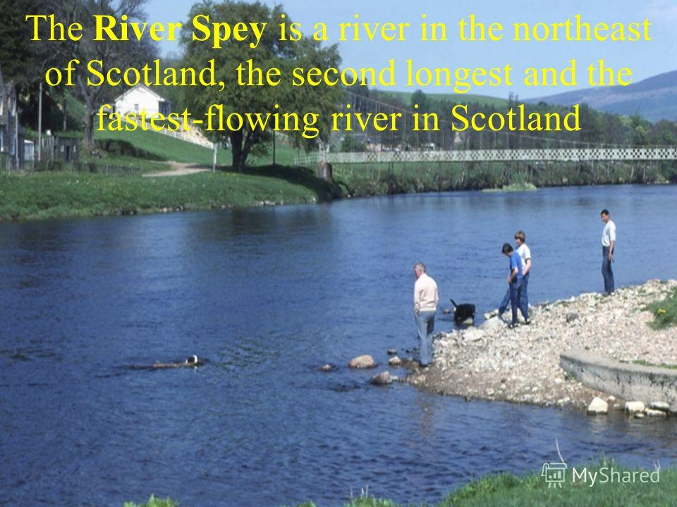 The River Spey is a river in the northeast of Scotland, the second longest and the fastest-flowing river in Scotland
