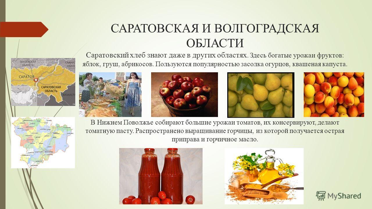 САРАТОВСКАЯ И ВОЛГОГРАДСКАЯ ОБЛАСТИ Саратовский хлеб знают даже в других областях. Здесь богатые урожаи фруктов: яблок, груш, абрикосов. Пользуются популярностью засолка огурцов, квашеная капуста. В Нижнем Поволжье собирают большие урожаи томатов, их