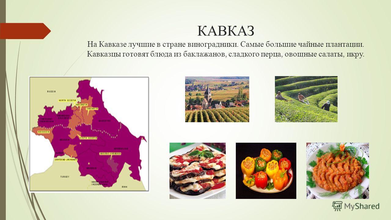 КАВКАЗ На Кавказе лучшие в стране виноградники. Самые большие чайные плантации. Кавказцы готовят блюда из баклажанов, сладкого перца, овощные салаты, икру.