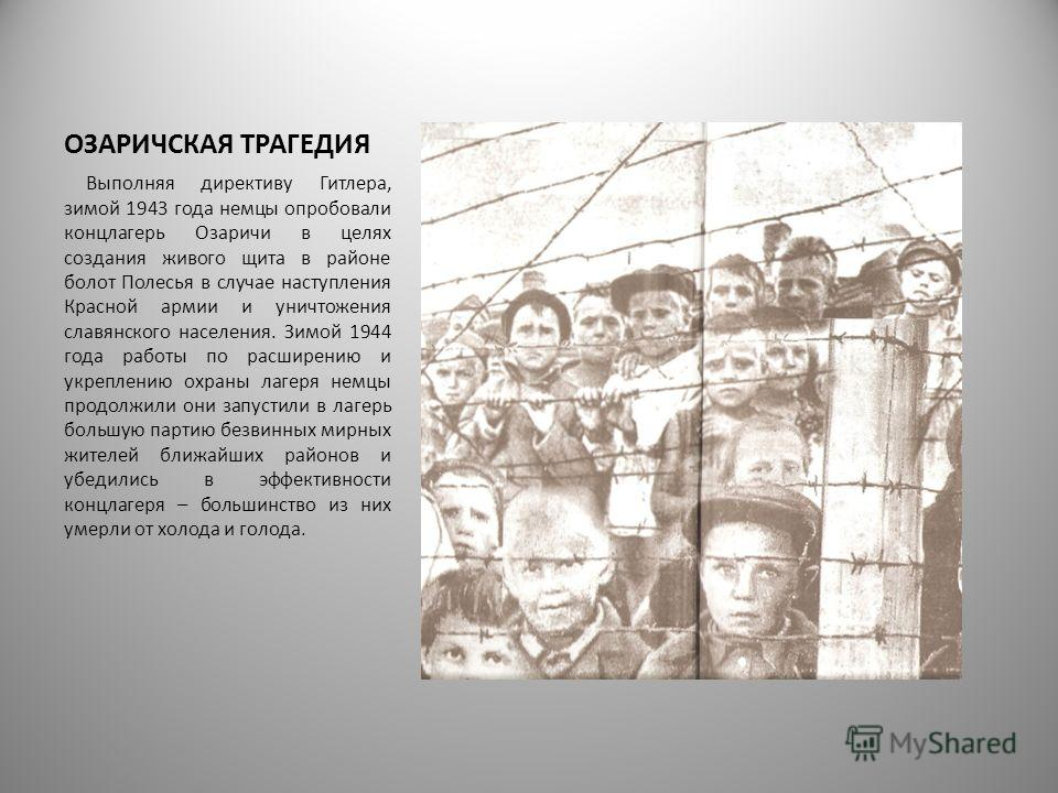ОЗАРИЧСКАЯ ТРАГЕДИЯ Выполняя директиву Гитлера, зимой 1943 года немцы опробовали концлагерь Озаричи в целях создания живого щита в районе болот Полесья в случае наступления Красной армии и уничтожения славянского населения. Зимой 1944 года работы по