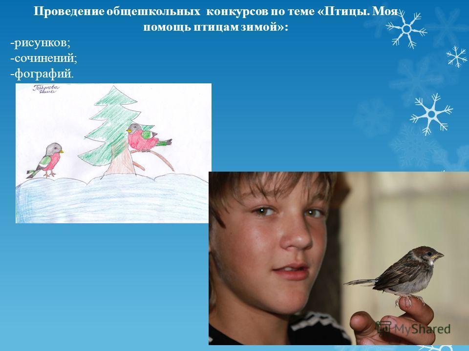 Проведение общешкольных конкурсов по теме «Птицы. Моя помощь птицам зимой»: -рисунков; -сочинений; -фографий.