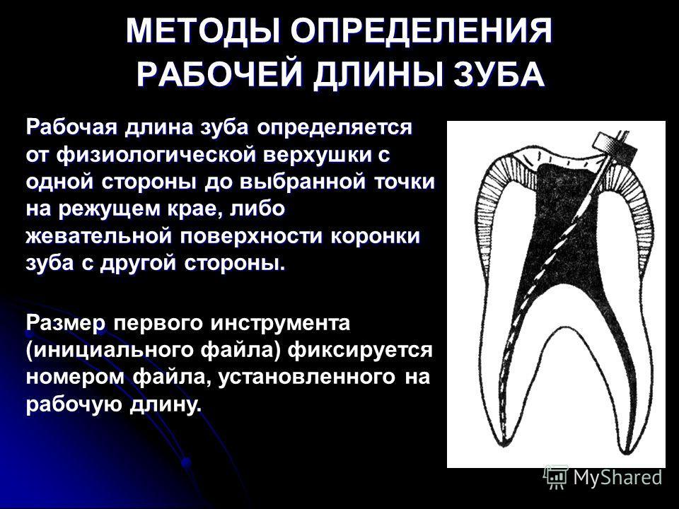 МЕТОДЫ ОПРЕДЕЛЕНИЯ РАБОЧЕЙ ДЛИНЫ ЗУБА Рабочая длина зуба определяется от физиологической верхушки с одной стороны до выбранной точки на режущем крае, либо жевательной поверхности коронки зуба с другой стороны. Размер первого инструмента (инициального