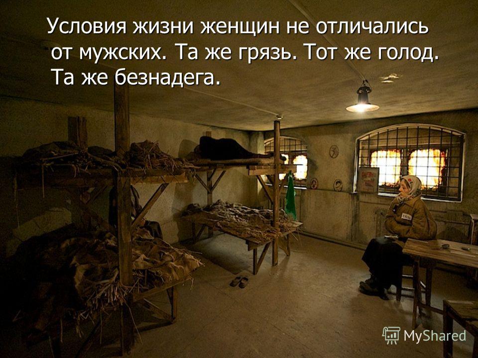 Условия жизни женщин не отличались от мужских. Та же грязь. Тот же голод. Та же безнадега. Условия жизни женщин не отличались от мужских. Та же грязь. Тот же голод. Та же безнадега.