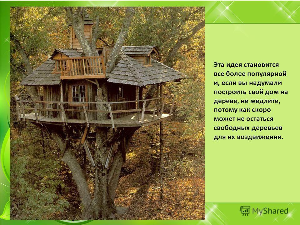 Эта идея становится все более популярной и, если вы надумали построить свой дом на дереве, не медлите, потому как скоро может не остаться свободных деревьев для их воздвижения.