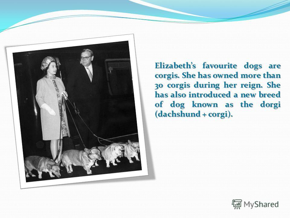 Elizabeths favourite dogs are corgis. She has owned more than 30 corgis during her reign. She has also introduced a new breed of dog known as the dorgi (dachshund + corgi).