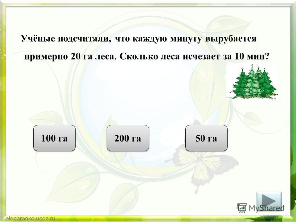 Учёные подсчитали, что каждую минуту вырубается примерно 20 га леса. Сколько леса исчезает за 10 мин? 100 га 200 га 50 га