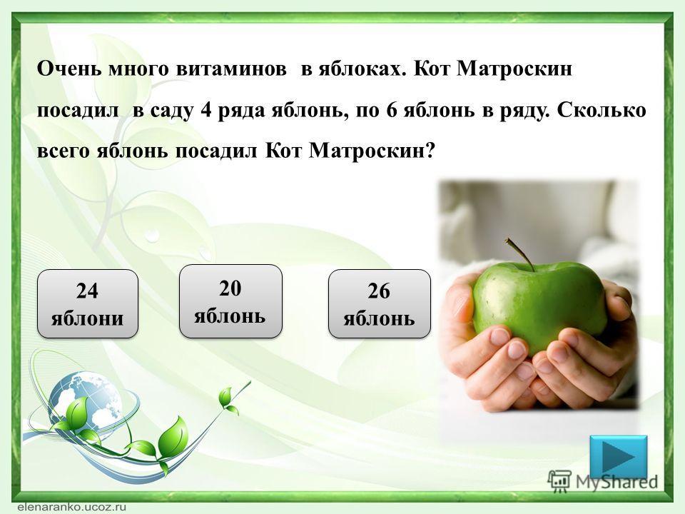 Очень много витаминов в яблоках. Кот Матроскин посадил в саду 4 ряда яблонь, по 6 яблонь в ряду. Сколько всего яблонь посадил Кот Матроскин? 24 яблони 20 яблонь 26 яблонь
